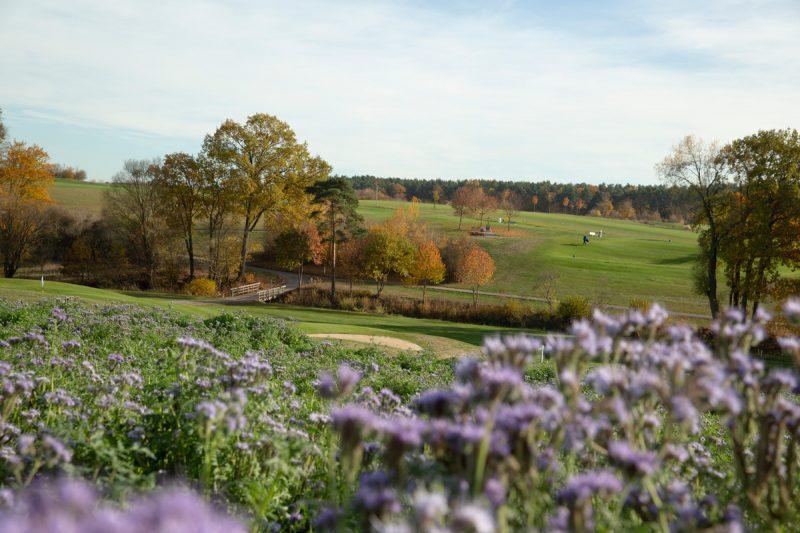 Golf-Club Herzogenaurach   News - Platz in der Natur