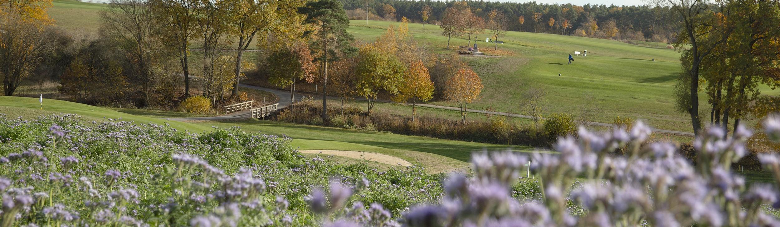 Golf-Club Herzogenaurach | Golf und Natur