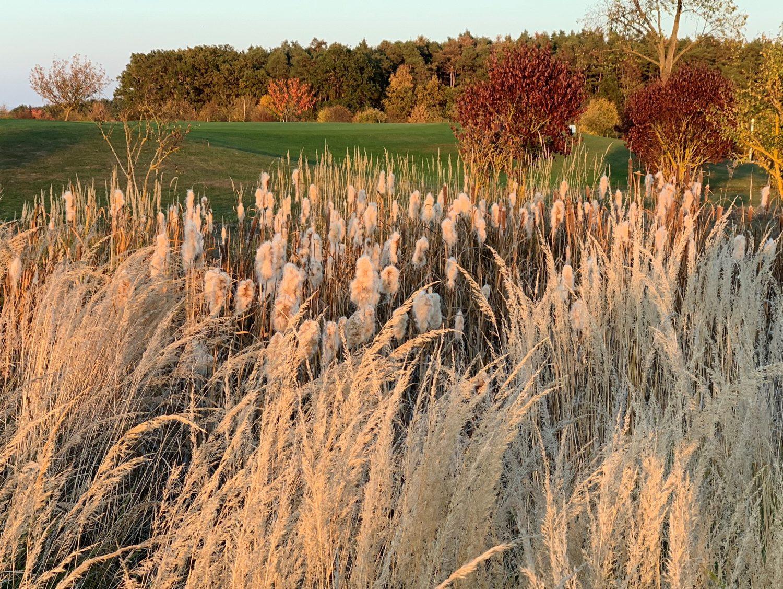 Golf-Club Herzogenaurach GuN Fotogalerie Herbst 055