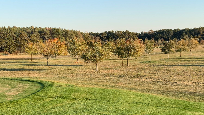 Golf-Club Herzogenaurach GuN Fotogalerie Herbst 070